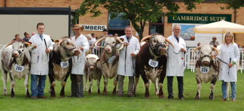 The Blackbrook Team - East of England Show 2007
