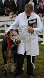 Fishwick Hedda - Great Yorkshire Show 2007