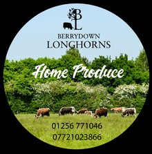 Berrydown Longhorns